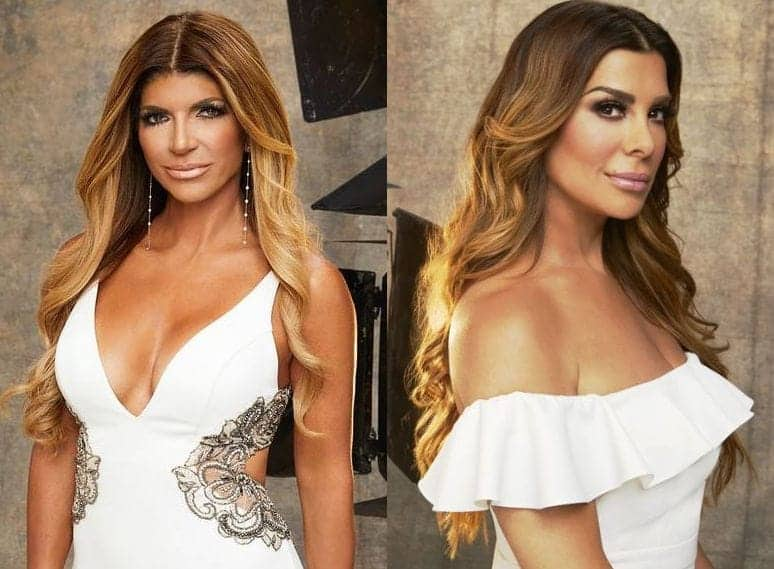 teresa giudice siggy flicker rhonj season 8