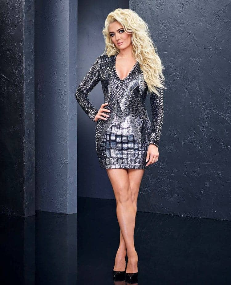 Erika Jayne RHOBH Season 8 Cast Photo