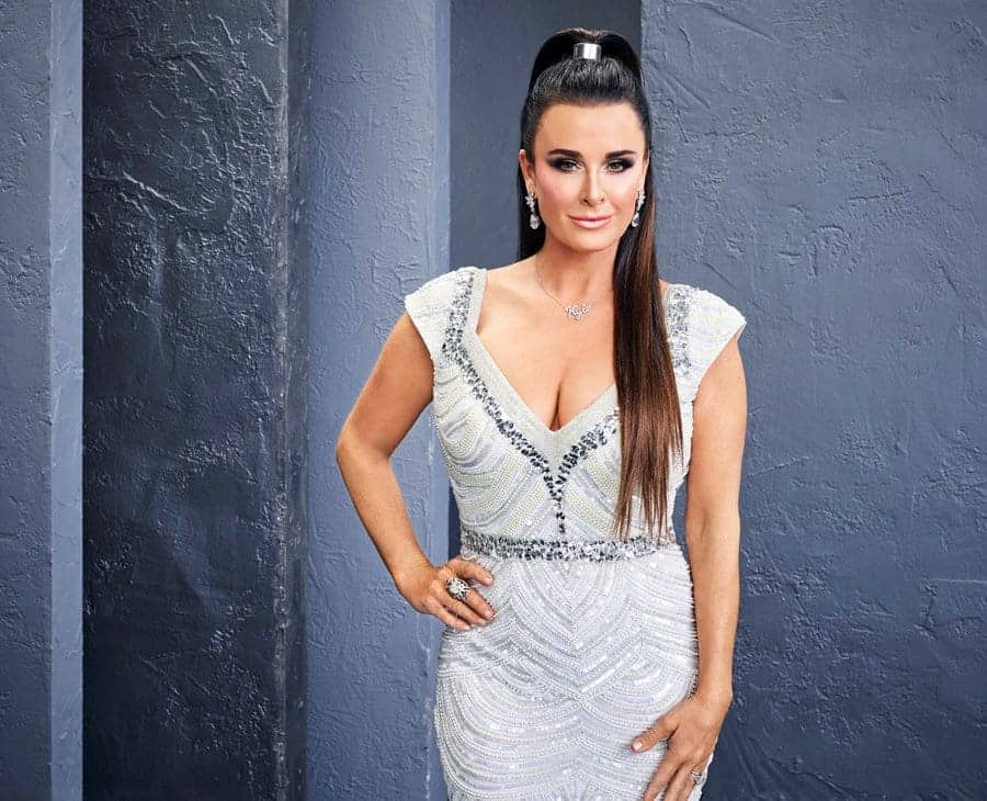 Kyle Richards RHOBH Season 8 Cast Photo