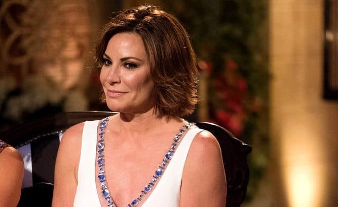 Luann de Lesseps Apologizes for arres