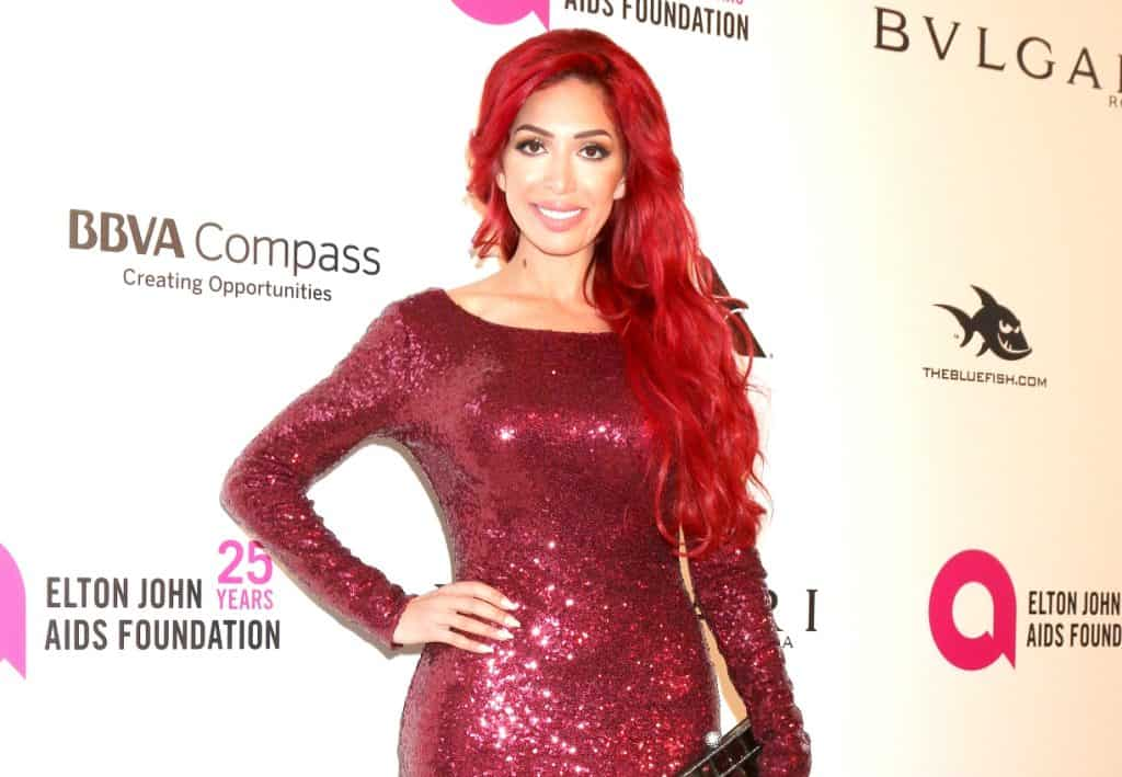 Teen Mom OG Farrah Abraham Arrested
