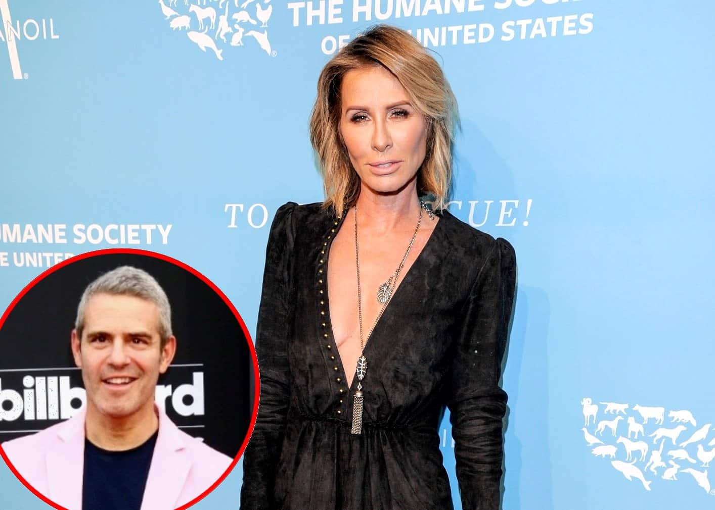 Carole Radziwill Throws Shade at Andy Cohen and RHONY