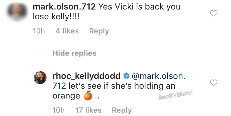 Kelly Dodd says Vicki is not a fulltime housewife