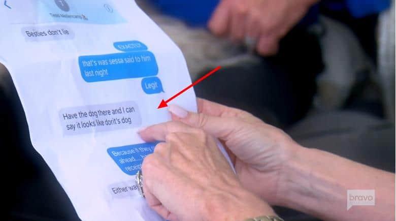 Teddi Mellencamp Texts Messages Reveal Dorit Dog Plot