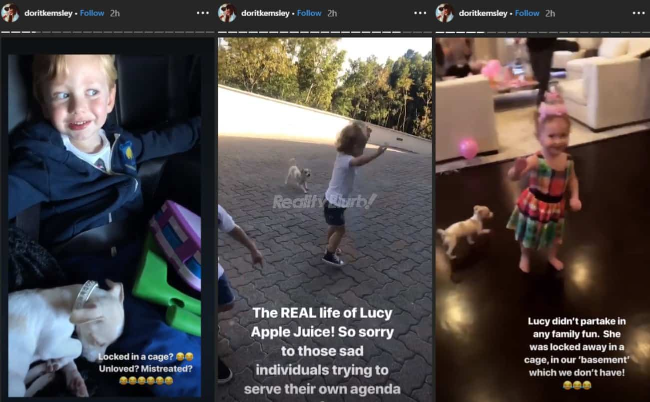 Dorit Kemsley shares photos of dog Lucy to deny mistreatment
