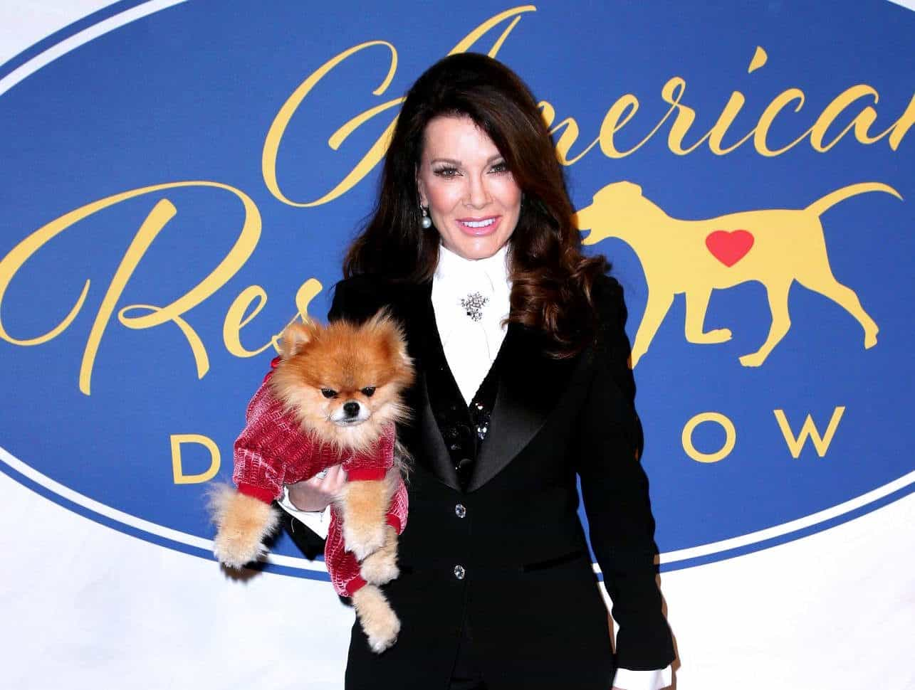 Is Lisa Vanderpump's New Vanderpump Dogs Spinoff Still In The Works?