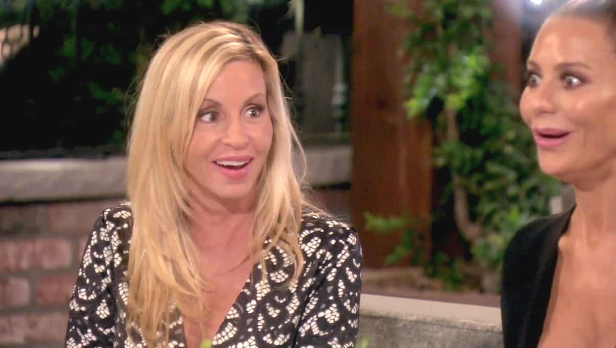 The Real Housewives of Beverly Hills Recap: Camille Makes a Distasteful Comment About Lisa