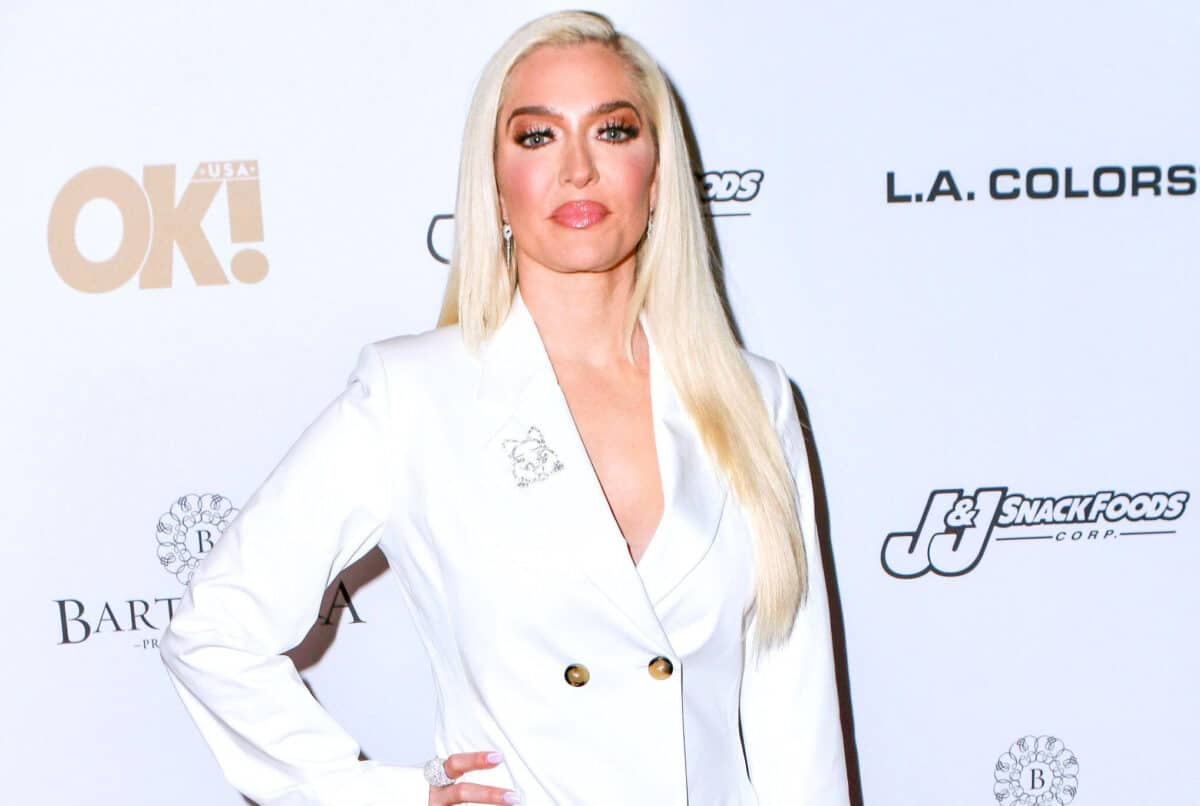 RHOBH Star Erika Jayne to Star on Broadway in the Revival of Chicago the Musical