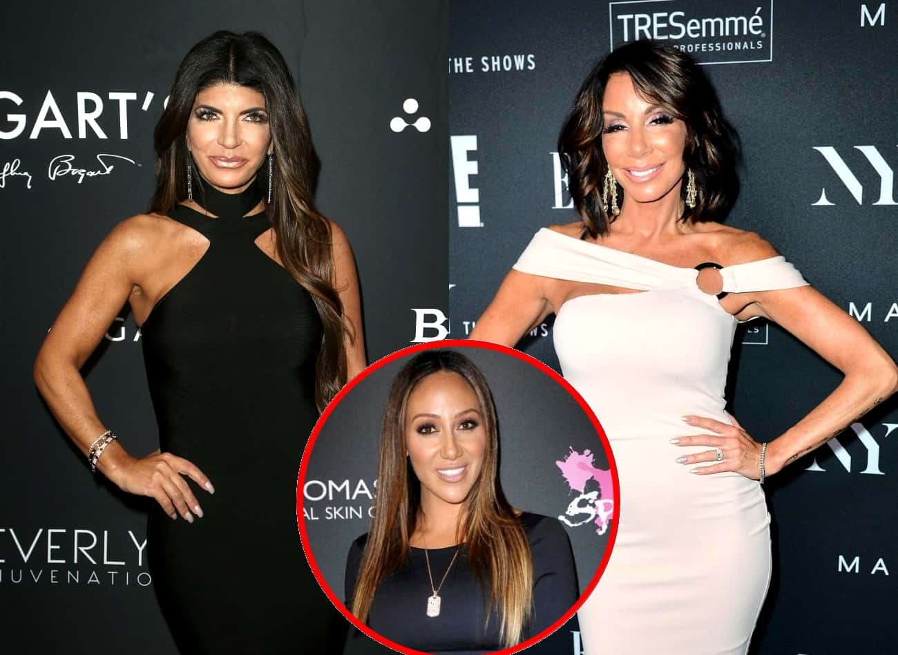 RHONJ's Teresa Giudice and Danielle Staub Had Falling Out Over 'Serious Allegations' Plus Melissa Gorga Was Involved