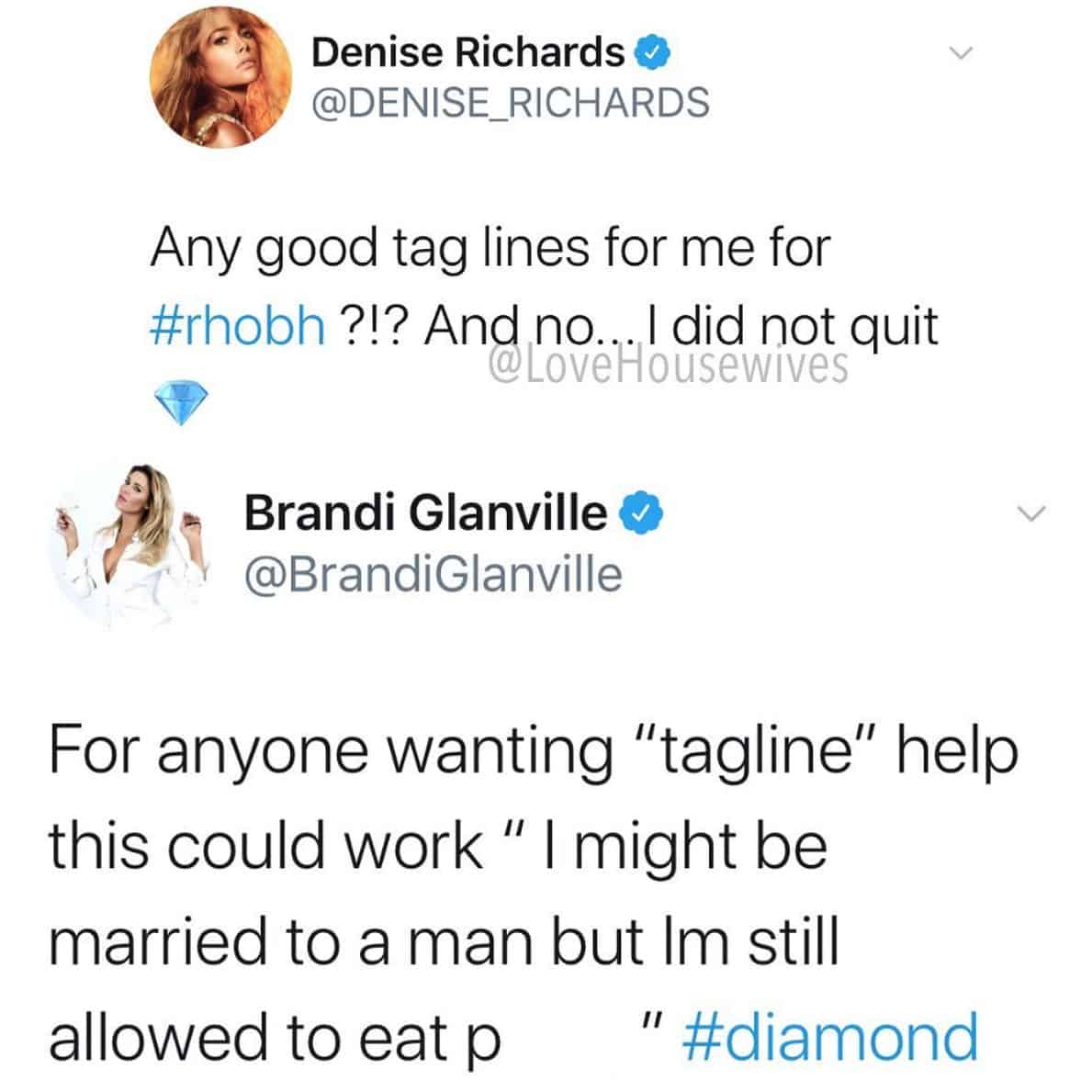RHOBH Brandi Glanville Suggests Denise Richards Has Open Marriage