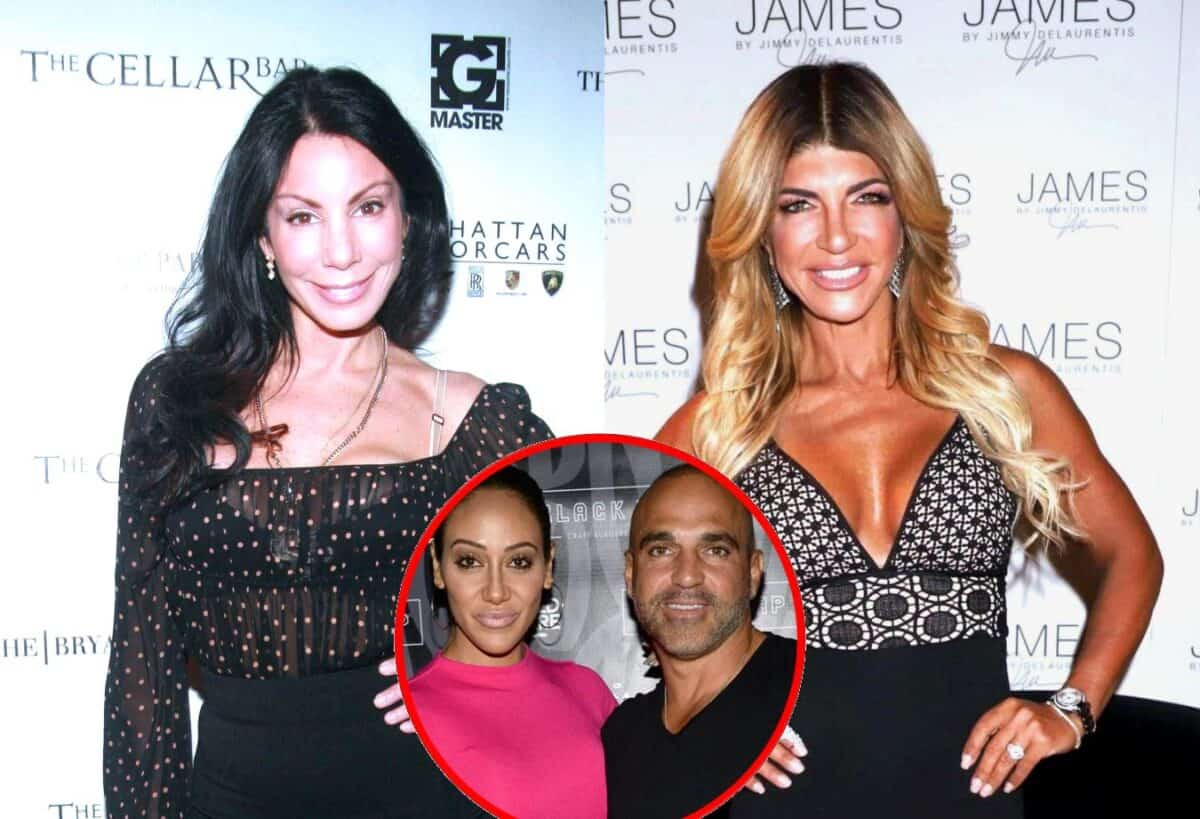 RHONJ's Danielle Staub Says Teresa Giudice 'Only Cares About Money' and Reacts to Her Ending Their Friendship, Accuses Melissa and Joe Gorga of Using Her Plus Her Regret About Hair Pull