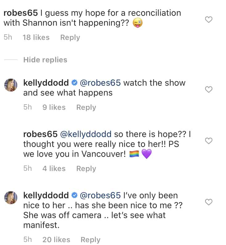 RHOC Kelly Dodd on If There's Hope of Reconciliation With Shannon Beador