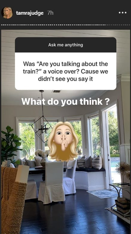 RHOC Tamra Judge Blames Editing for Train Comment