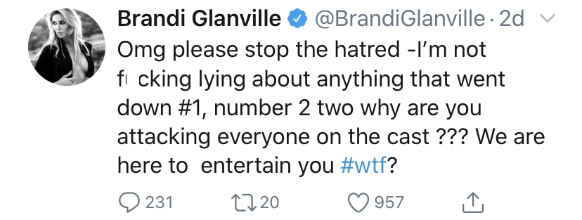 RHOBH Brandi Glanville Insists She's Not Lying About RHOBH