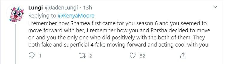 RHOA Fan defends Kenya Moore against Porsha and Shamea