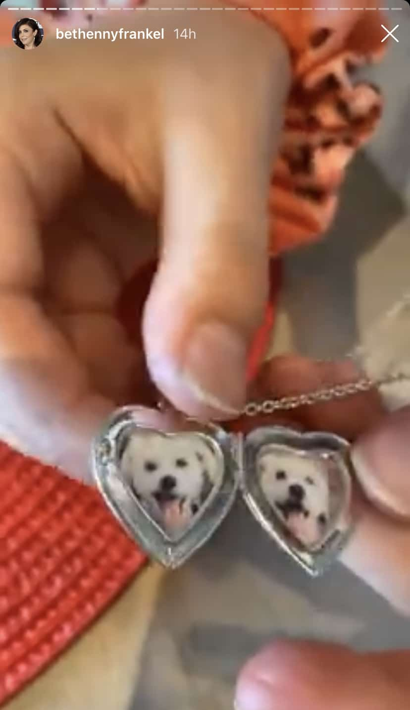 RHONY Bethenny Frankel's Daughter Gets Locket With Dogs Photos