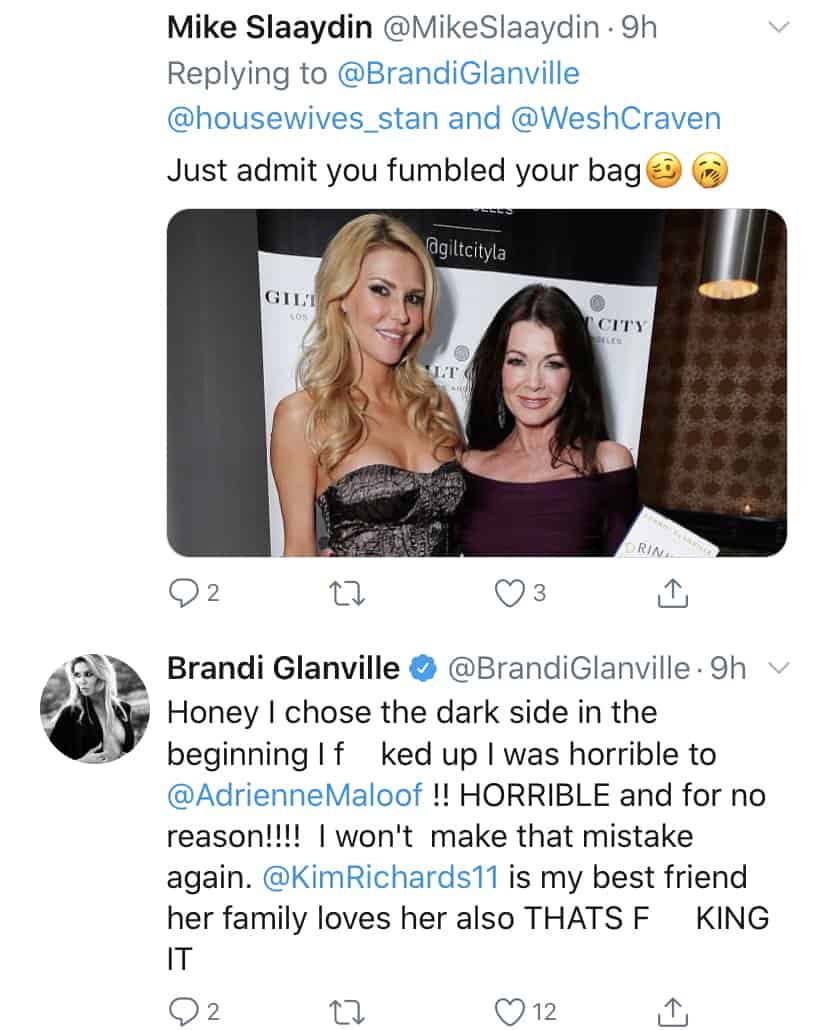 Brandi Glanville Admits to Being on the Dark Side on RHOBH
