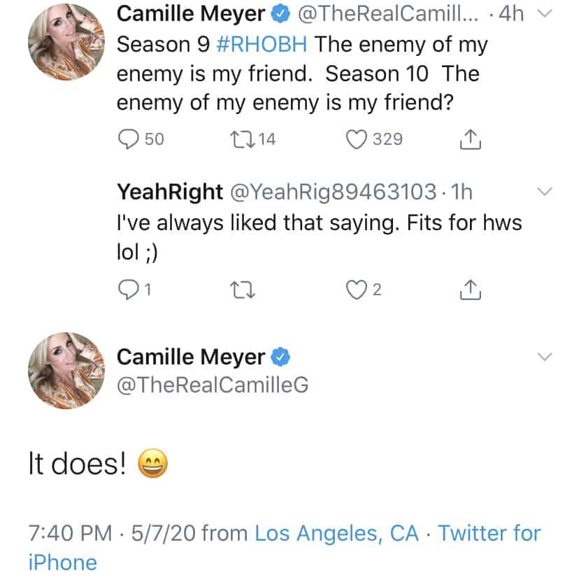RHOBH Camille Grammer Believes RHOBH Cast is Friends Due to Common Enemies