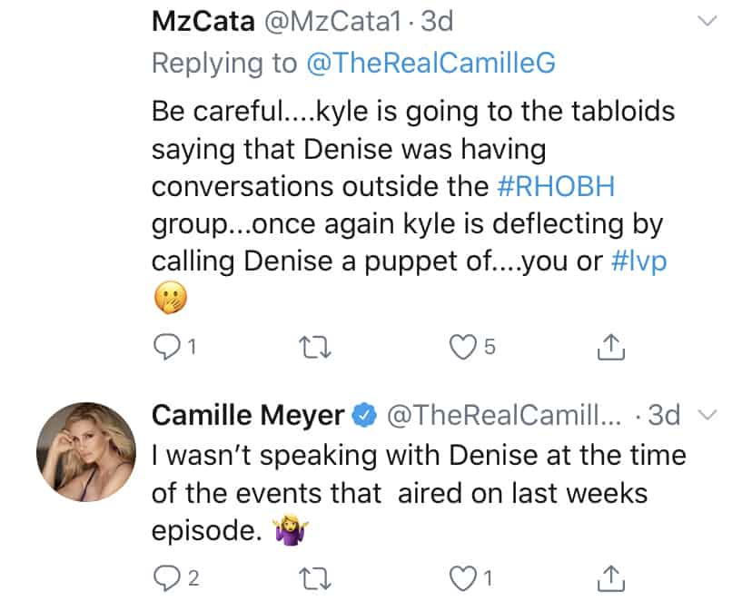 Camille Grammer is Not Using Denise Richards as a Puppet
