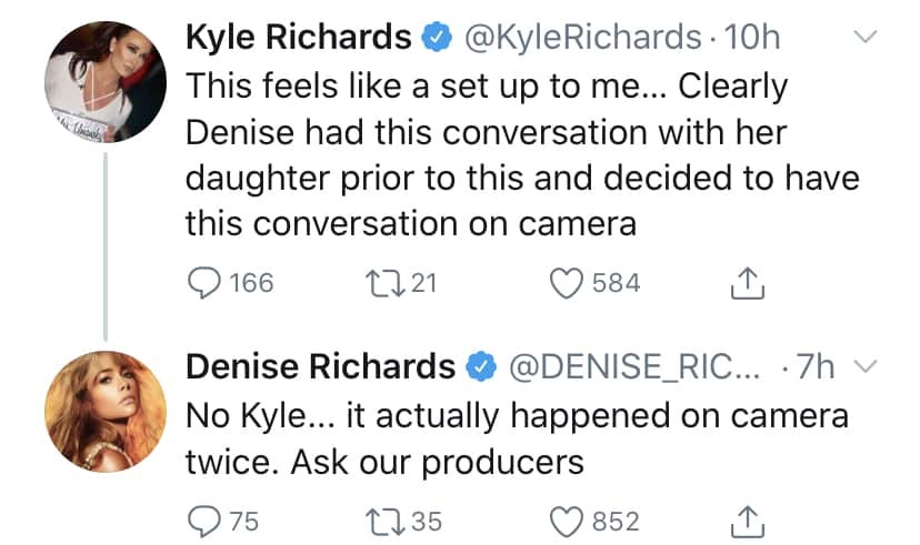 RHOBH Denise Richards Denies Kyle Richards' Claims of a Set Up With Daughter