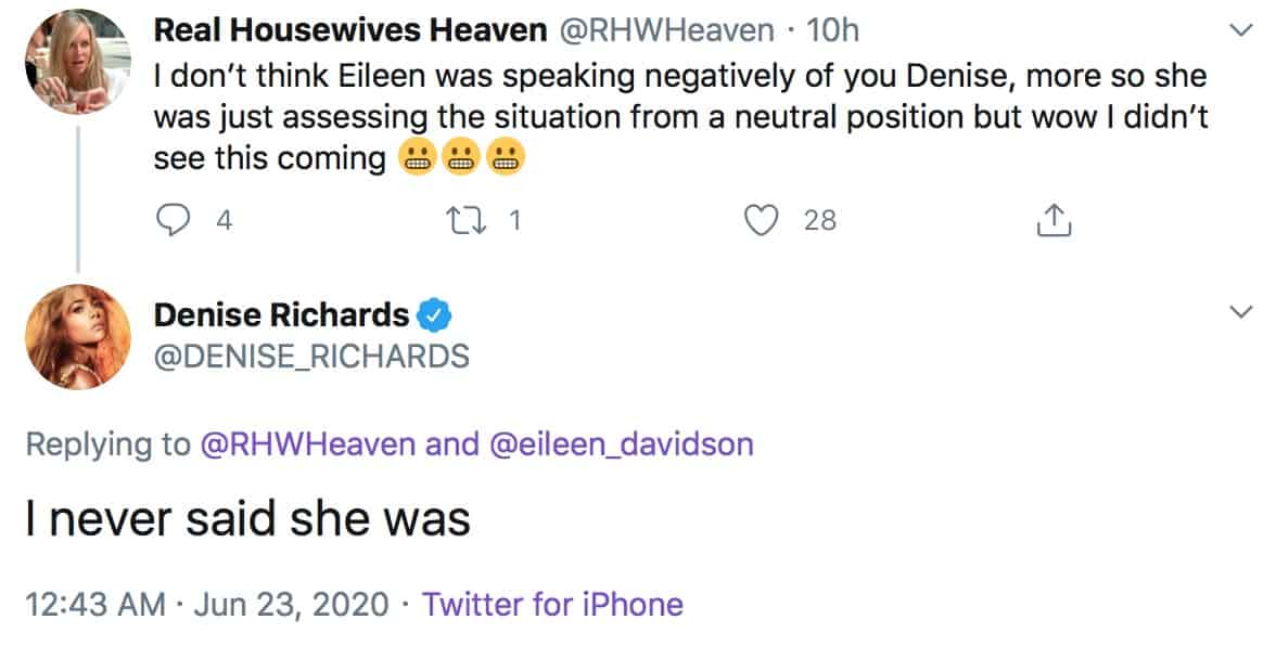 RHOBH Denise Richards Reacts to Eileen Davidson Potentially Being Negative