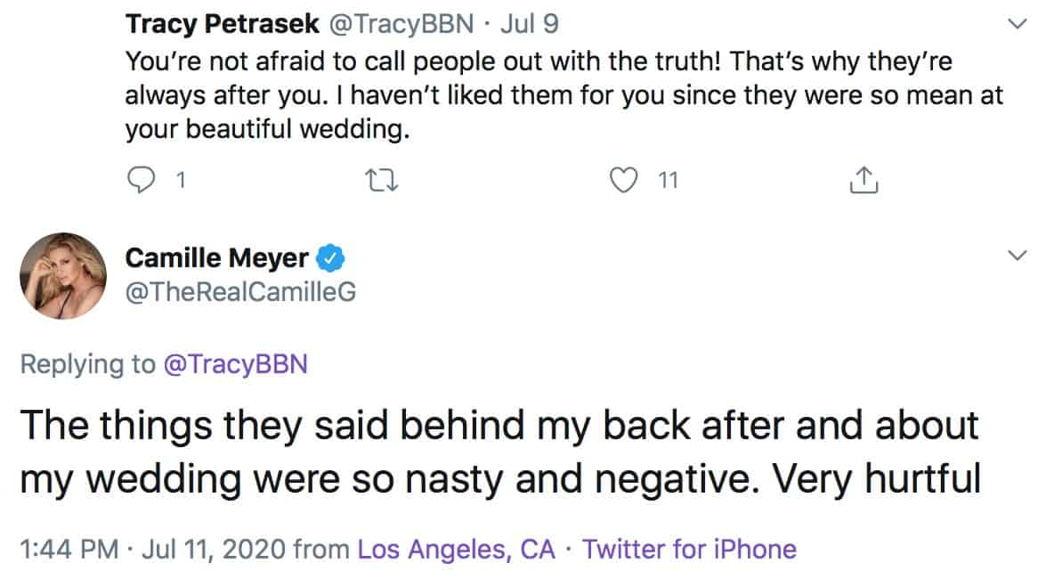 RHOBH Camille Grammer Claims RHOBH Cast Was Nasty and Negative During Season 9