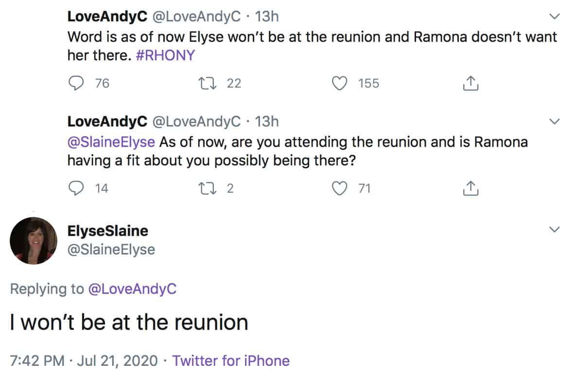 Elyse Slaine Confirms She Will Not Be at RHONY Reunion