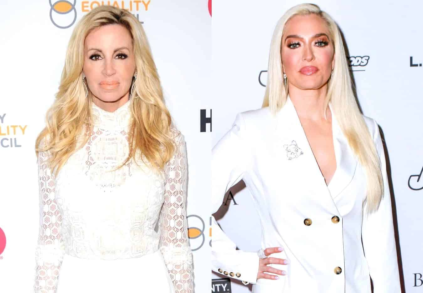 "Camille Grammer Calls on Erika Jayne to Bring More Than ""Self-Promotion"" to the RHOBH, Praises Denise For Carrying This Season and Shades Brandi"