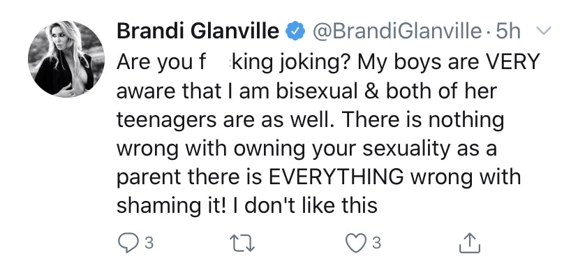 RHOBH Brandi Glanville Reacts to Fan Who Mentions Her Children Amid Denise Richards Affair Rumors