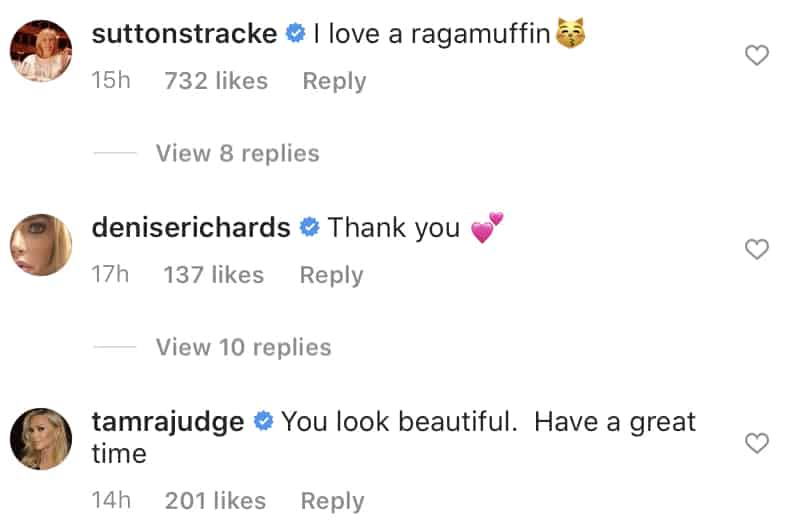 Real Housewives React to Denise Richards' Ragamuffin Photo on Instagram