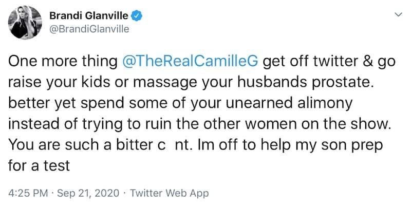 RHOBH Brandi Glanville Targets Camille Grammer for Spending Kelsey's Money