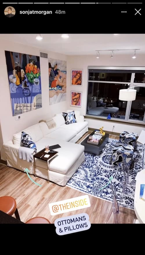 RHONY Sonja Morgan Shares Photo of Daughter's Apartment and Artwork