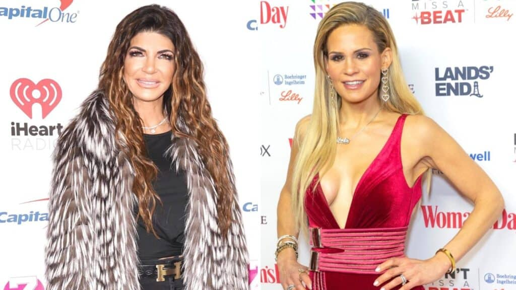 Teresa Giudice and Jackie Goldschneider Feuded Over Cheating Accusations on New RHONJ Season, Details of Allegations and Cast Drama Revealed, Plus Did Melissa Gorga Take a Side?