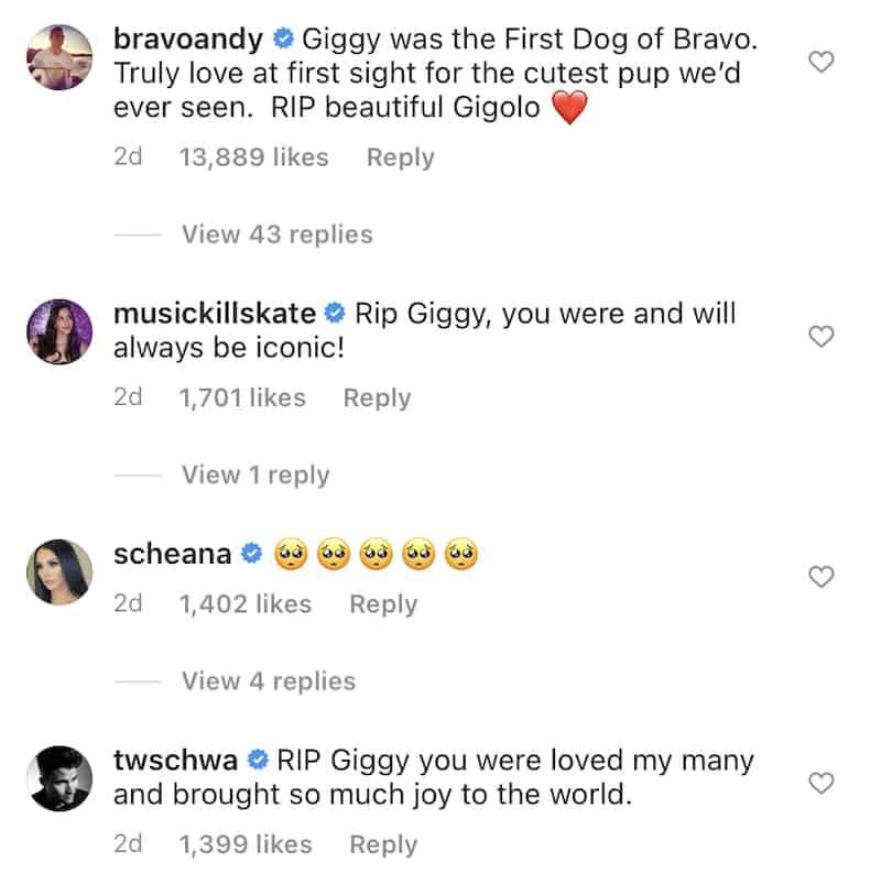 Bravo Stars React to Death of Lisa Vanderpump's Dog Giggy
