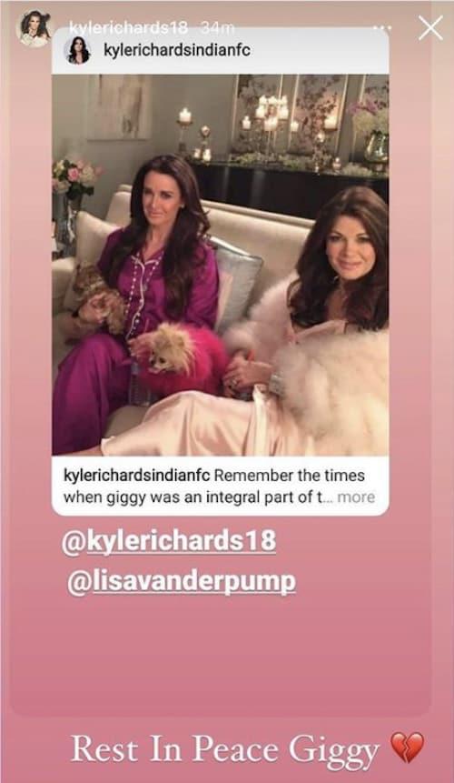 RHOBH Kyle Richards Offers Condolences to Lisa Vanderpump After Giggy Death