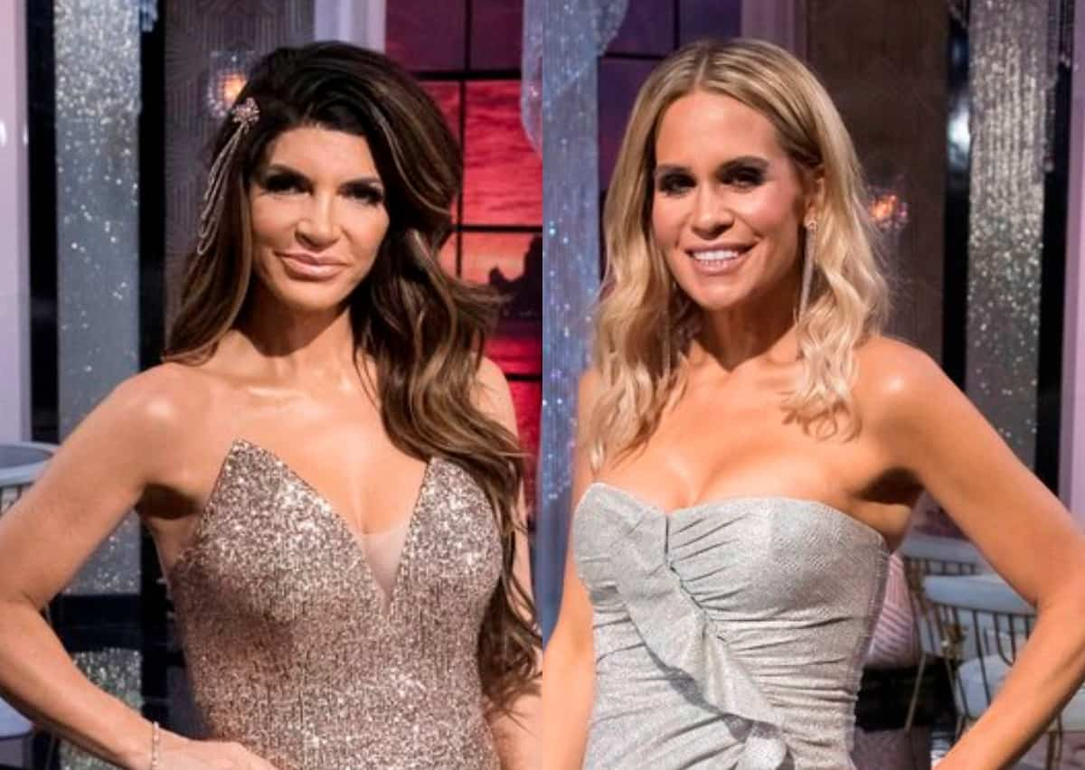 """Teresa Guidice Calls Jackie Goldschneider's Analogy """"Disgraceful"""" And Defends Spreading Cheating Rumors About Evan Goldschneider On RHONJ Premiere"""