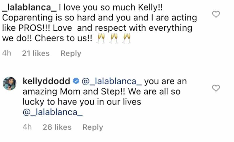 RHOC Kelly Dodd Applauds Jolie's Amazing Step Mom