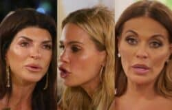 RHONJ Recap: Teresa and Jackie Fight it Out Again and Dolores is Questioned on Her Relationship With David