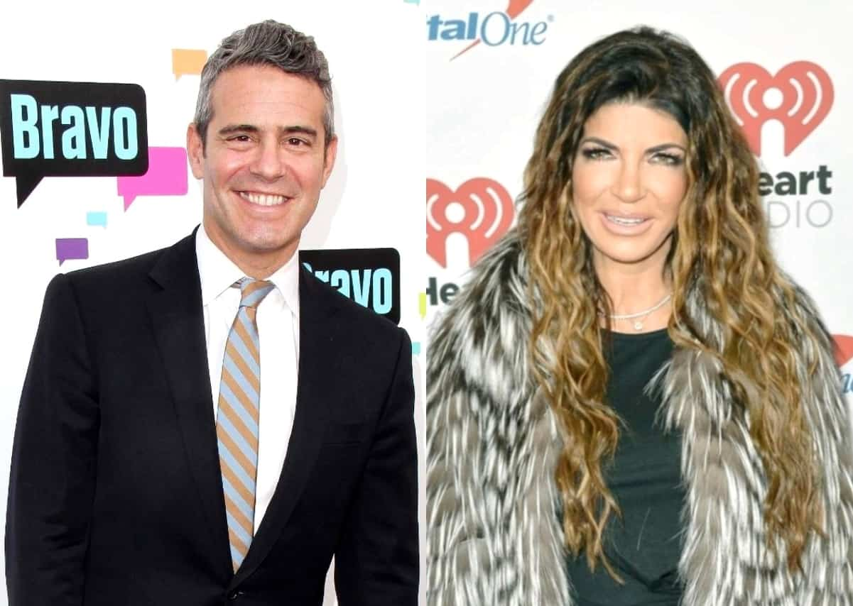 """Andy Cohen Explains Why He Chose Not To Fire RHONJ's Teresa Giudice Following Fraud Conviction And Prison Sentence And Admits He Wanted To See Her """"Grow"""""""