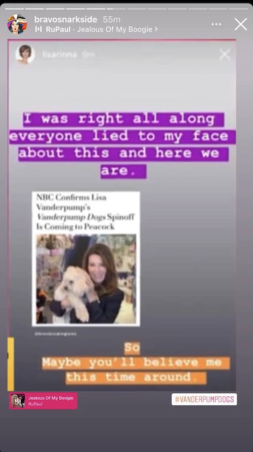 RHOBH Lisa Rinna Claims She Was Lied to About Vanderpump Dogs