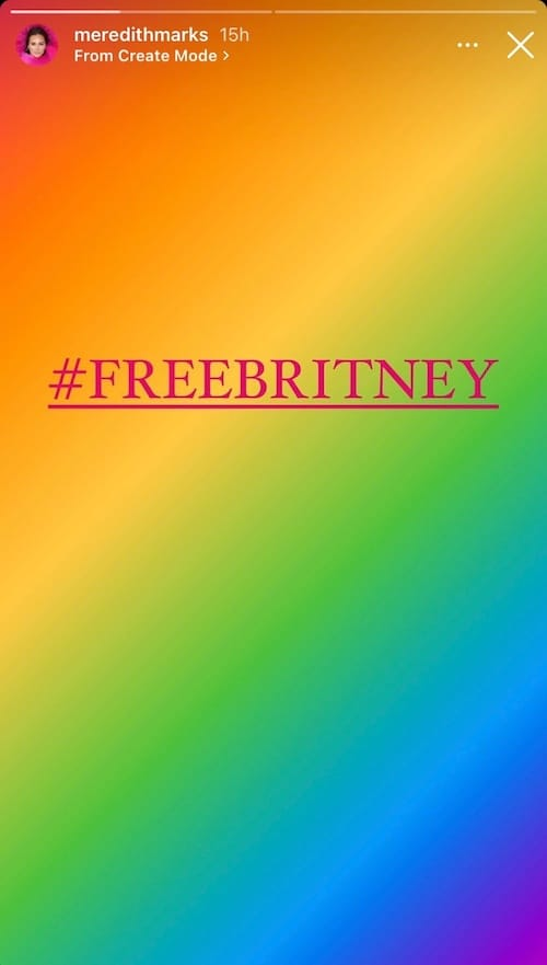 RHOSLC Meredith Marks Shares #FreeBritney Post on Her Instagram Story