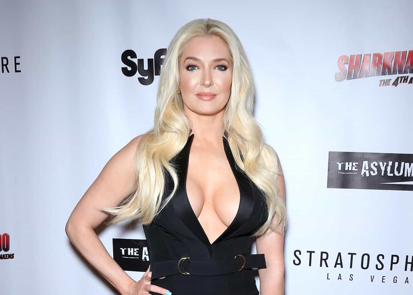 RHOBH Star Erika Jayne Hires New Attorney After Former Representation Dropped Her Following Hulu's Housewife and the Hustler Documentary