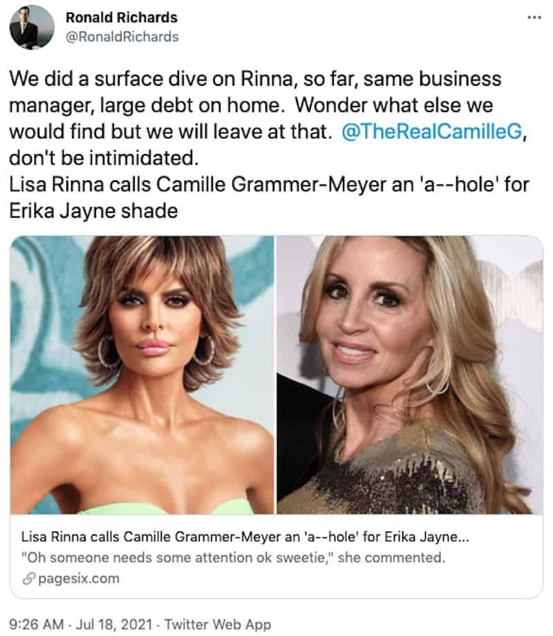 RHOBH Erika Jayne Investigator Gets in on Lisa Rinna Camille Grammer Drama