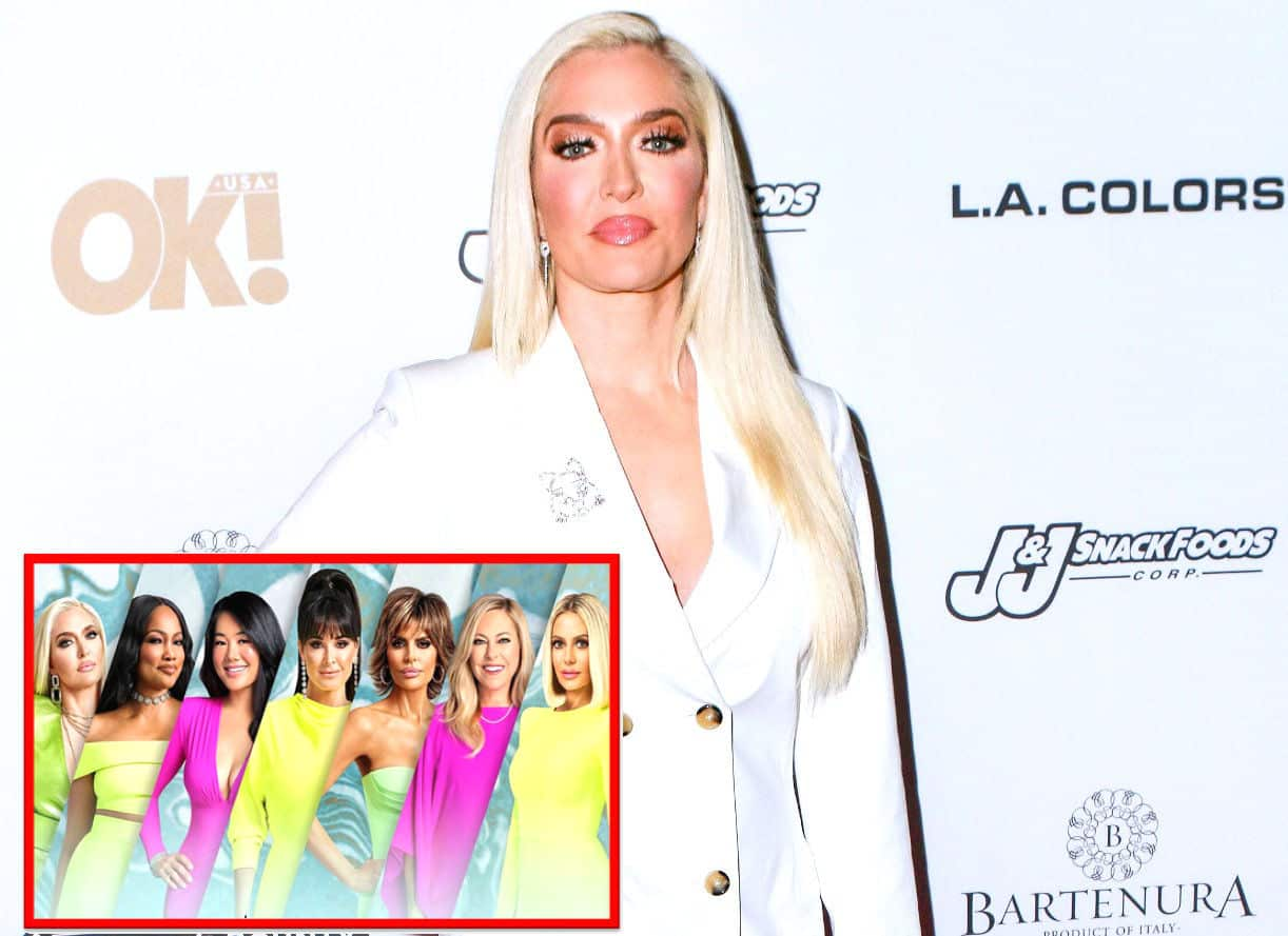 Erika Jayne Suggests She's the Only RHOBH Cast Member With a Storyline, Shares Thoughts on RHOP as Lisa Rinna Weighs in