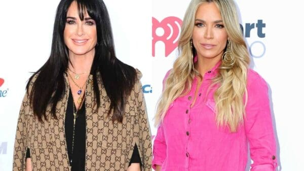 PHOTOS: RHOBH's Kyle Richards Hospitalized After Walking Into Bee Hive as Teddi Mellencamp Busts Open Cheek and Lip During Late-Night Fall