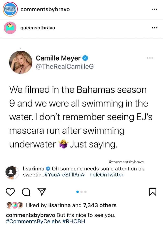 RHOBH Lisa Rinna Responds to Camille Grammer Twitter Diss