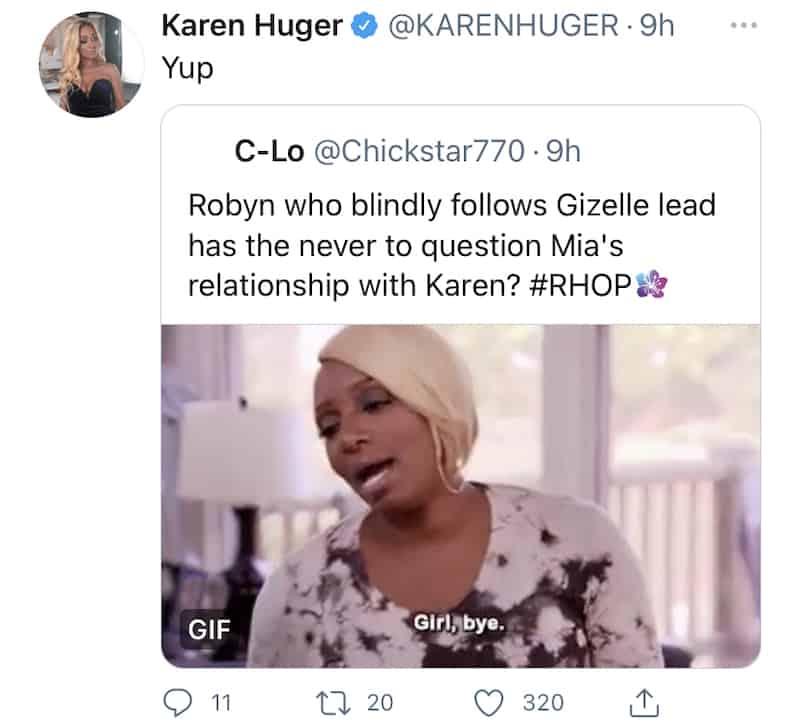 RHOP Karen Huger Slams Robyn Dixon for Blindly Following Gizelle Bryant