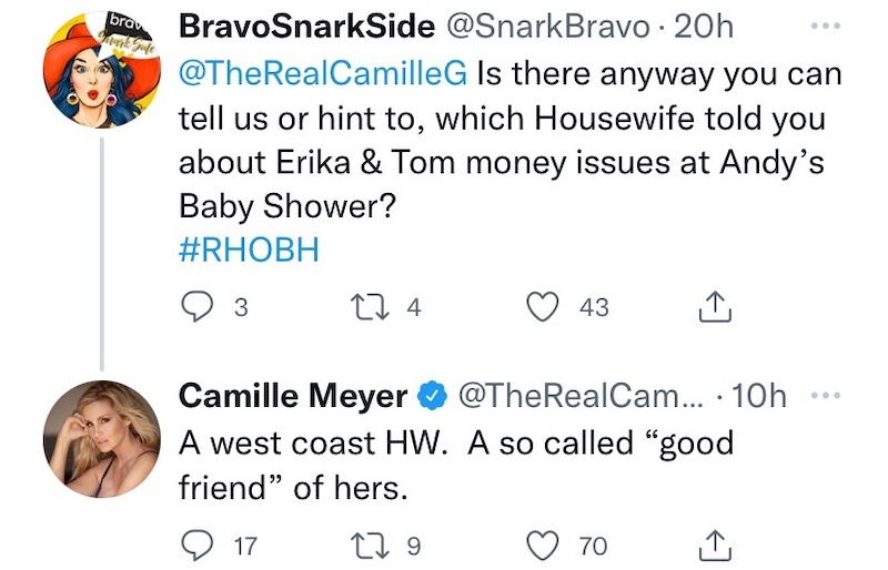 rhobh camille grammer hints at who told her about erika jayne financial rumors
