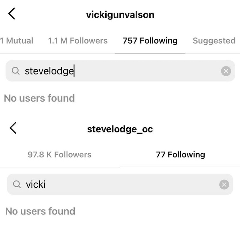 RHOC Vicki Gunvalson and Steve Lodge Unfollow One Another on Instagram